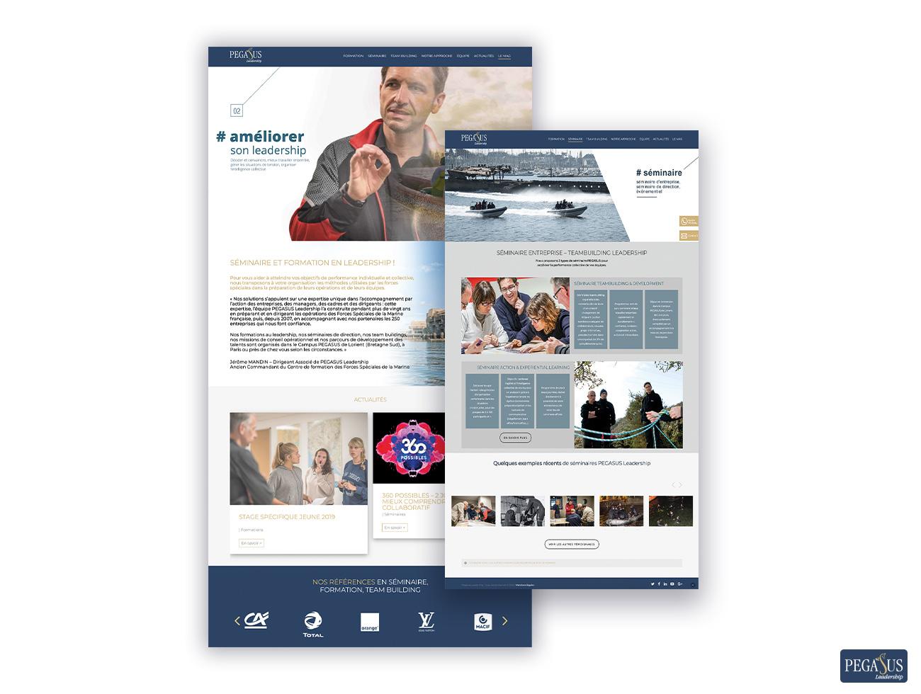 PEGASUS-Leadership-Site-communication-identité-visuelle-bretagne